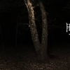 「フリントフック」「眠れる魂」などなど!今月配信のPS4ダウンロード専用ソフトをチェック!