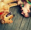 僕のワンダフル・ライフの感想・評判は?とにかく泣ける!悲しい!愛犬家にはたまらん映画。