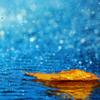 やる気と天気の共通点