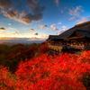 紅葉と言えば京都!ならばそのまま京都で東南アジアを感じて帰りませんか??おすすめのアジアンフードあります!
