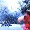 シラケる裁判と虞クラスタホッパー『仮面ライダーゼロワン』第22話