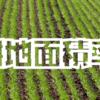 【2017年】「耕地面積率」ランキング
