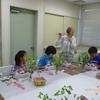 Flower Arrangement for Mother's Day Event 英語で学ぼうフラワーアレンジメント