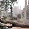 台風が西尾健にくれたもの〜夏の終わり〜