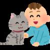 ウチの猫と同級生だったのはいつ頃?愛猫を人間の年齢にしてみよう