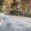 久しぶりに紅葉を見に六甲山をドライブ!