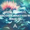 Aveda Institutes でfacial treatment 受けてきました