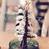 クリスマスのプレゼント交換で子供が喜ぶマジッククリスマスツリー♪