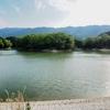 中戸新池(奈良県葛城)