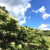 恵那峡周辺を走りました