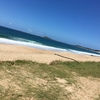 【Newcastle】2件目WWOOF2日目。ビーチに行きました。