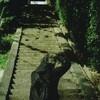 大山崎  Leica M3 CineStill 50D その1