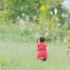 子どもと歩こう!メリットがいっぱいの【歩育】