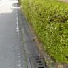 生垣とブロック塀:どっちが優れているか?