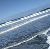 空が一番きれいな時間。コカ・コーラを片手に海からの贈り物を探す日。