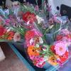 花とへび(21花卉)