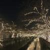 中目黒 クリスマスイルミネーション JEWEL DOME2016