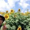 南信州 阿南町にあるひまわり畑「平岩農場」に行ってきました!