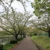 荒子川公園 2020.4.21