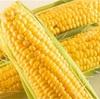 今が旬!トウモロコシの新常識✨知って得するソレダメな調理法&食べ方☆