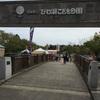 大阪から日帰り旅行記①滋賀県〜びわ湖こどもの国編〜