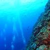 ♪秘境・ルカン礁へ!透明度30mオーバー!豪快ドロップオフ!♪〜沖縄ダイビング・アドバンスドオープンウォーターダイバー〜