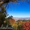 シーズン到来!紅葉真っ盛りの高尾山 各ルートの特徴と混雑状況