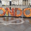 【イギリス留学記】150日目(Tue) 5ヶ月が経ちロンドンが寂しく見え始める