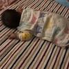 0歳 7ヶ月 夜泣き
