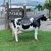 【会津坂下町】会津のべこの乳アイス牧場に行ってきた話