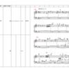 Brahms Piano Concerto No. 1 D moll Movt. 1