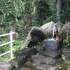 湧き水汲み(中野市赤岩地区:「弁天水」)