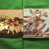 声が良い。井上陽水さんのセルフカバーアルバム『9.5カラット』をブックオフで購入。聴いた感想を書きました