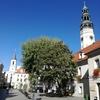 ポーランド ジェロナグラ 日曜日の過ごし方
