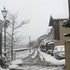 記録的大雪の金沢、、果たして明後日は銀座へ行けるのか。もう昨日ですがお菓子は上生菓子で【めで鯛】