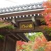 京都 紅葉100シリーズ モミジの永観堂(禅林寺)
