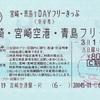 宮崎・青島1DAYフリーきっぷ