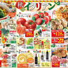企画 メインテーマ 秋のイタリアン マミーマート 9月9日号
