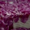 さよなら、僕達のJuice=Juice。