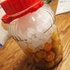 夏に向けて梅ジュース作るよ!梅パワーで夏バテ知らずの身体を作ろう!