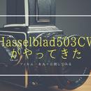 中判フィルムカメラの頂点、ハッセルブラッド503CWがやってきた。フィルム1本丸々公開してみる。