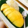 バンコク☆先生の差し入れは、あの例のマンゴーのスイーツ