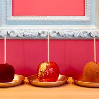 タテマチストリートのはりねずみのいるカフェ「つんつん ぶんの りんご」がリニューアルオープン!