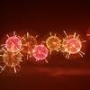 鴻巣花火大会~今年のラストを飾る4尺玉、まさかの・・・!?