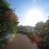 2020.8.18【石狩市浜益】三等三角点「天狗山」(316.7m)