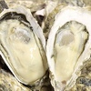 【ふるさと納税】長崎県時津(とぎつ)町 牡蠣 殻付き 3kg (加熱用) が届きました〜!福岡VS長崎牡蠣合戦はどちらが上?美味しい牡蠣はこっちだった!
