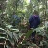 【南米バックパッカーDAY24】先住民とジャングルの狩りに同行!!