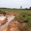 タイ東北部イサーンにある農場の最南端で稲作開始しました。 2016/08