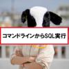 【SQL Server】コマンドラインからSQLを実行する方法。