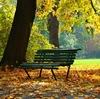 秋に聴きたい曲